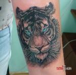 Женская татуировка тигра на руке.