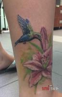 Цветная татуировка колибри