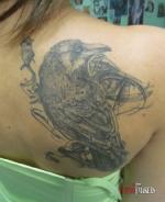 Татуировка вороны на лопатке.