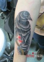 Тату ворона на руке.